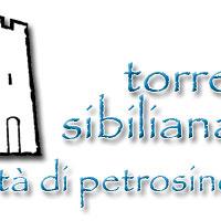 logo-torresibiliana-200x200.png